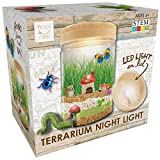 Hapinest Light-up Terrarium Kit for Kids