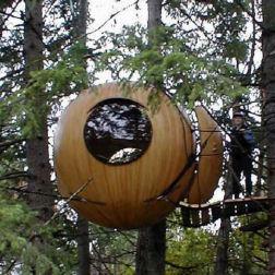 Tree Pod