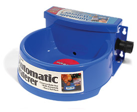 Automatic Dog Watering Bowl