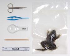 frog-dissection-kit.jpg