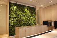 plantwall.jpg