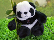 Panda Web Cam