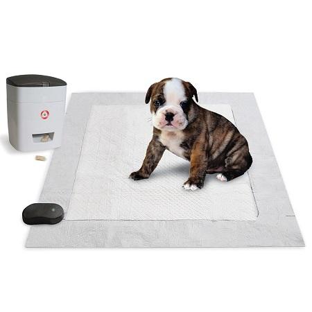 pavlovian-puppy-potty-trainer