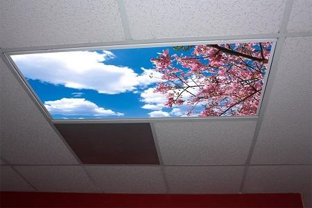 Skypanel Artifical Light