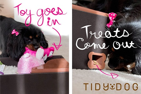 how to teach a dog to recognize toys