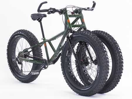 Fat Tire Bullfrog Trike