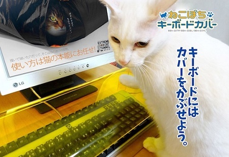 Neko Pochi Anti-Cat Keyboard
