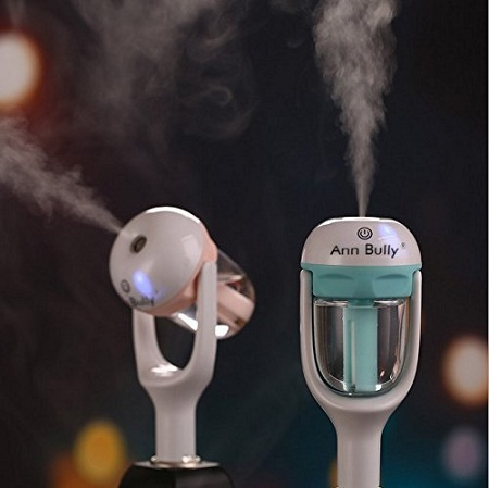 Ann Bully Car Charger Humidifier and Aromatherapy