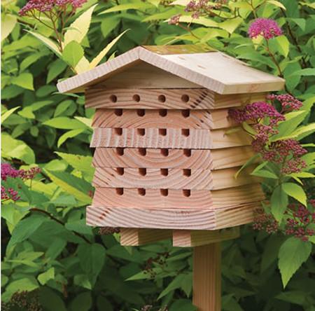 british-bee-house