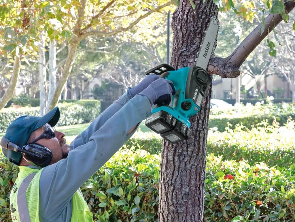 worker using the Makita XCU02PT Electric Chainsaw to cut down a tree