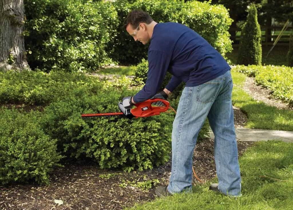 BLACK+DECKER TR117 used on a small hedge