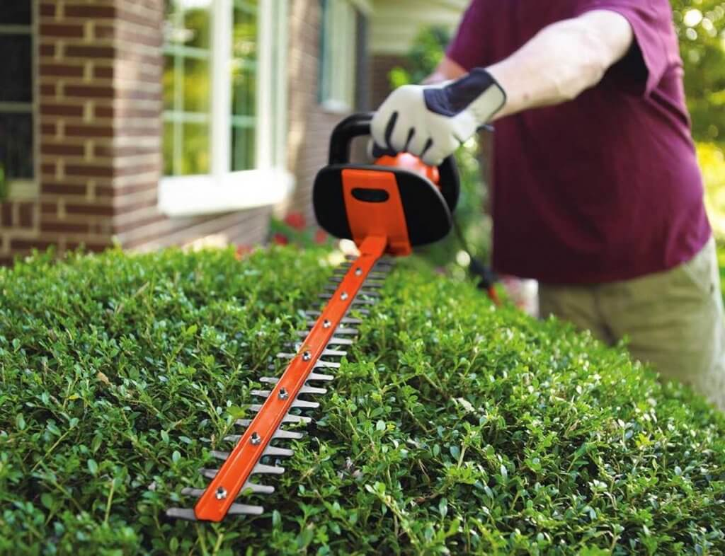 Black+Decker HH2455 used on a hedge