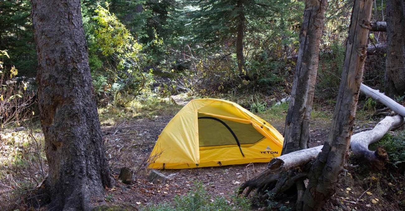 TETON Sports Outfitter XXL Quick Tent in the woods