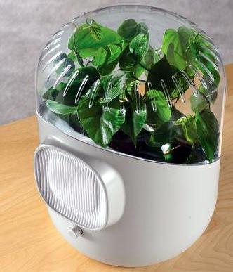 BotanicalAirPurifier