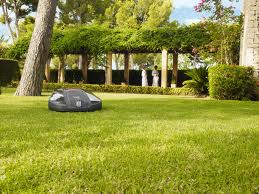 robot lawn mowing with your smartphone