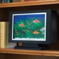 bookshelf-aquarium.jpg