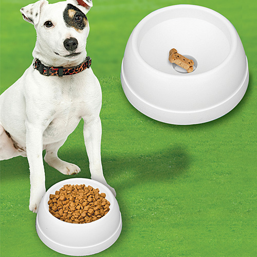 finicky-feeder-dog-bowl