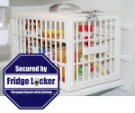 Fridge Locker Protects Your Goodies And Beer Stash