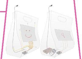 Concept Ladybag
