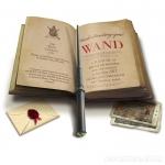 Magic wand remote