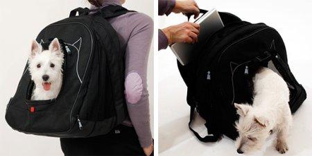 pet-laptop