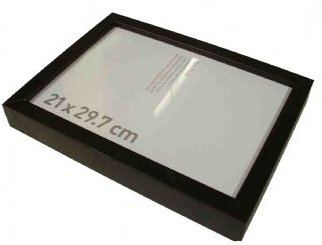 GSM Bug Picture Frame