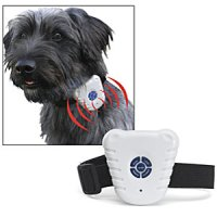 stop-barking-collar