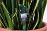 The DIY Plant Twitter Kit