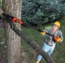 Cordless Electric Pole Chainsaw