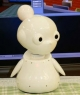 Mamoru: A Robot to Assist the Aged