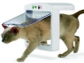 Pet Porte Microchip Cat Flap lets in your cat only