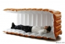 With NAPPAK, You can Sleep Anywhere, especially the office