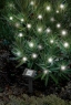 Solar-Powered LED Holiday Lights