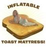 Inflatable Toast Mattress