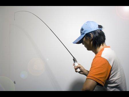 wii-fishing-pole.jpg